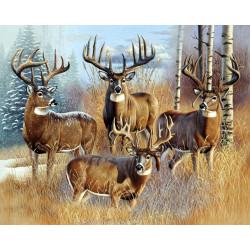 Whitetail Buck Panel