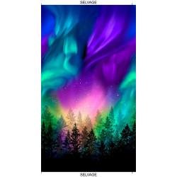 Aurora Panel