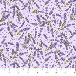 Lavender Market Lavender on Purple