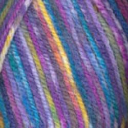 Encore Colorspun Rainbow