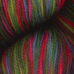 Happy Feet Rainbow Mix