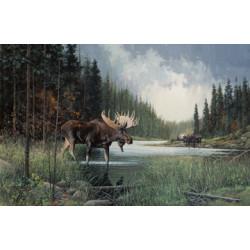 Moose Lake Panel