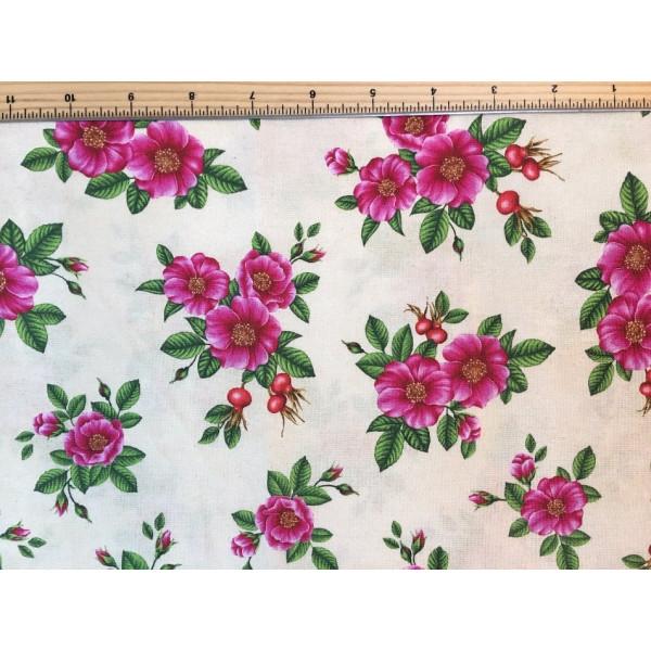 Wildflowers of Maine Rosa Rugosa