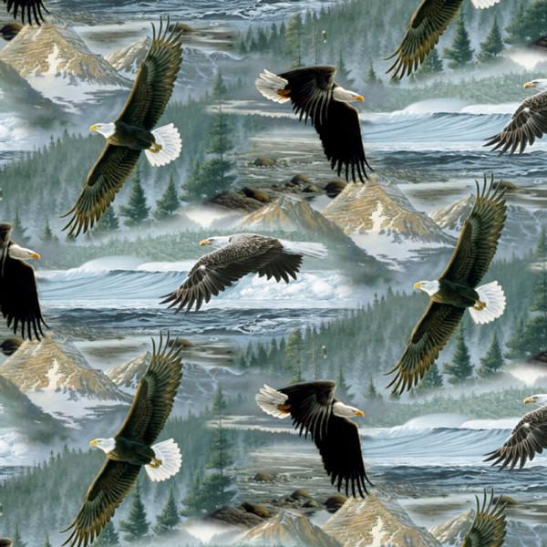 Soaring Along Eagles
