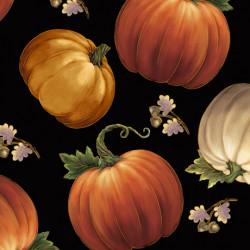 Harvest Elegance Pumpkins/black