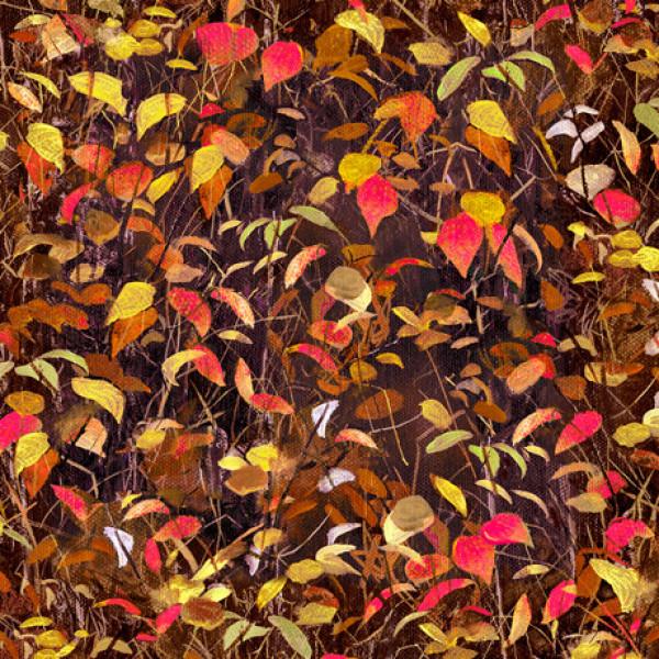 Leaves/Brown