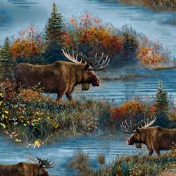 Scenic Moose/Blue