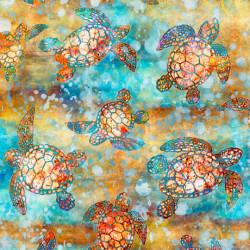 Sea Turtles/Multi