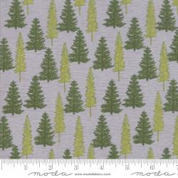 Explore Trees on Gray