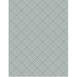 A Country Weekend Gray/Green Diagonal Plaid