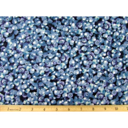 Blueberries--Kaufmann