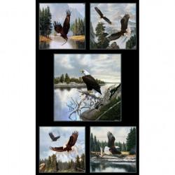 Bald Eagle Panel