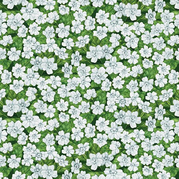 Garden Gathering White Daisies