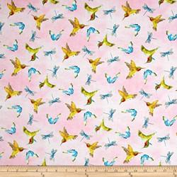 Prelude--Hummingbirds/Butterflies