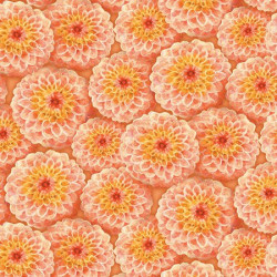 Prelude--Orange Mums