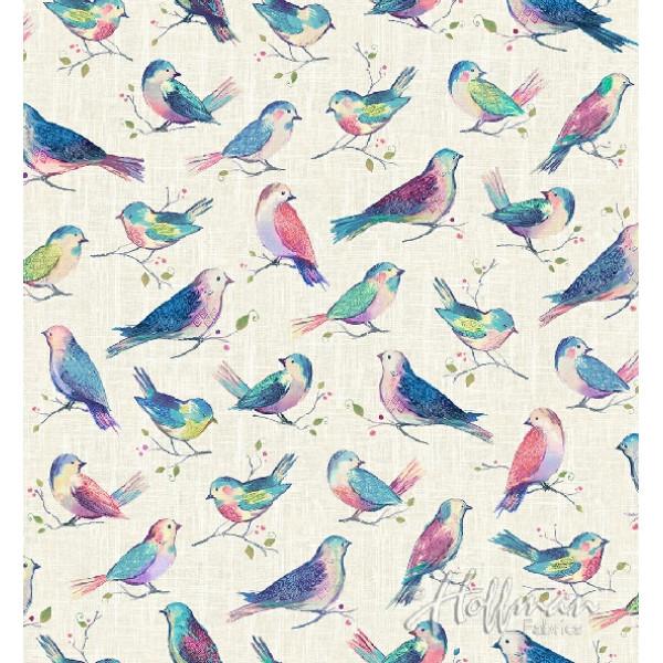 All A Twitter-Birds Digital