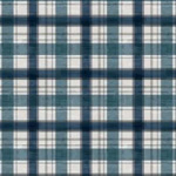 Day at The Lake Blue Plaid